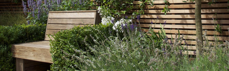 h Kew_plants03_