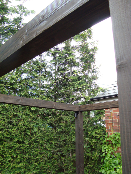 Stained softwood cube pergola with stainless steel trellis