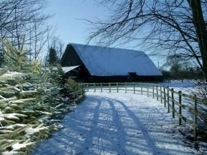 Blackthorpe Barn - Suffolk