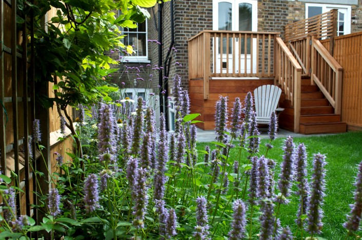 Small Back Garden, Ellesmere road, Bow, E3